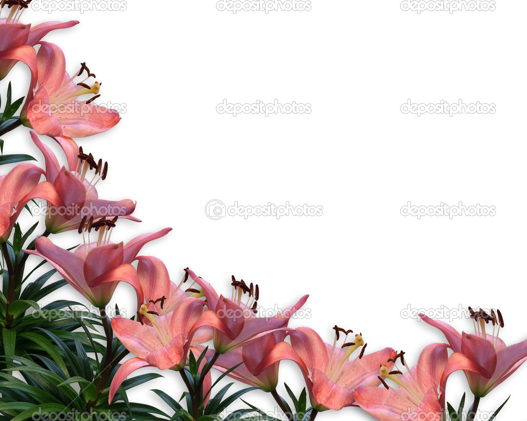 Floral Border invitation Pink Lilies