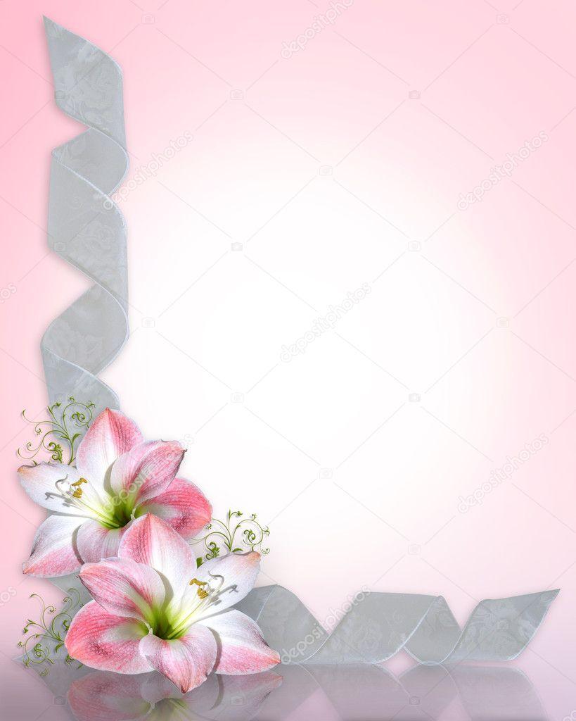 Amaryllis Pink Flower Border Stock Photo 169 Irisangel