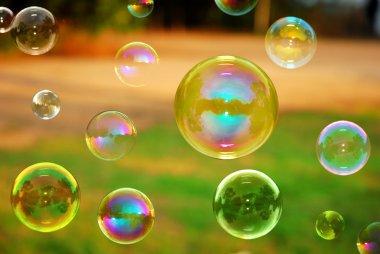 Soap Autumn bubbles