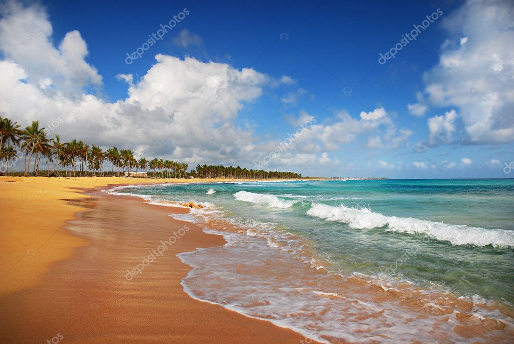 Exotic Beach in tropic islands