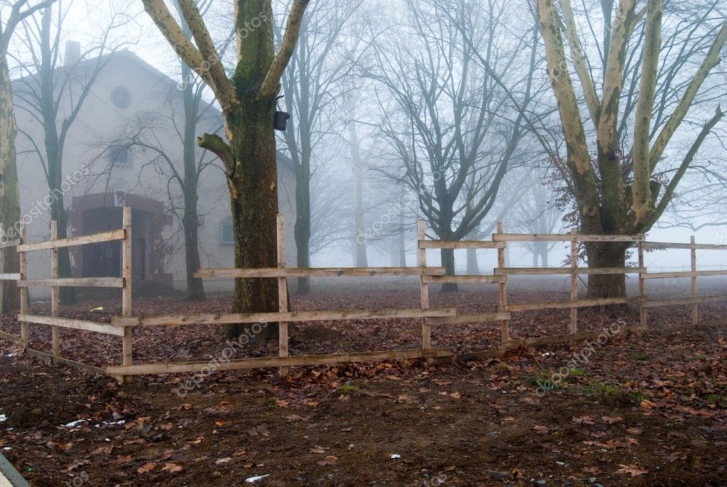 Foggy house behind the wooden fence