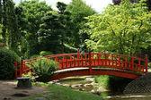 červený most v japonské zahradě
