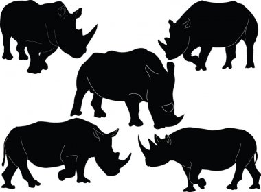 Rhinoceros illustration collection