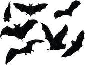 Fotografia collezione di illustrazione di pipistrelli