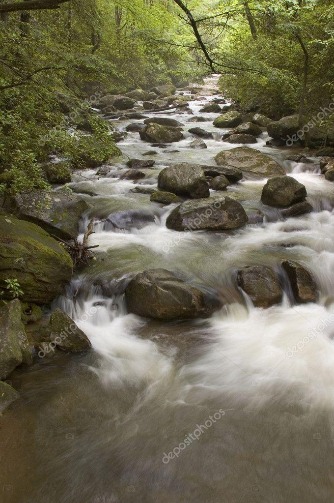 Middle Saluda River in SC.