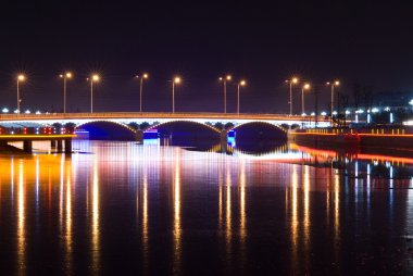 Bridge with Neon Light at night
