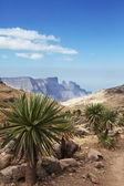 Fotografie Ethiopian landscapes