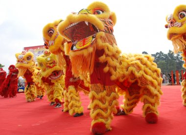 Chinese playing lion dance