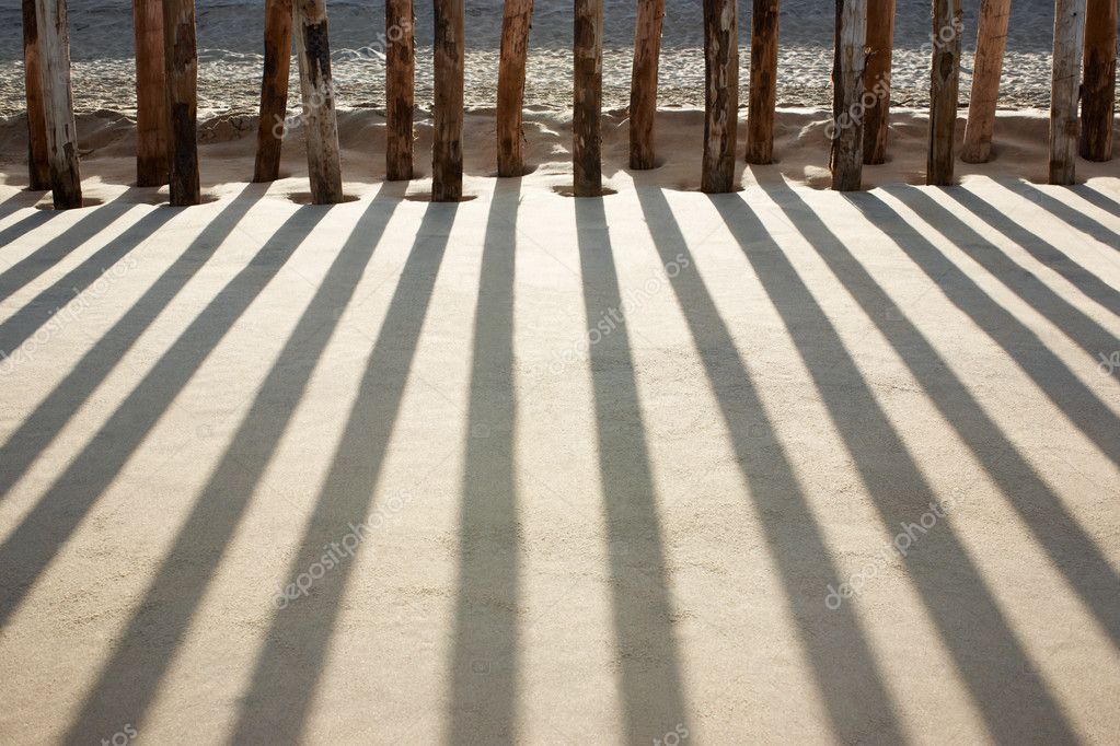 Pilings on beach