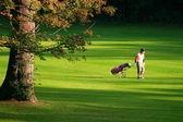 Golf v létě!