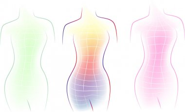 Contour of a female body