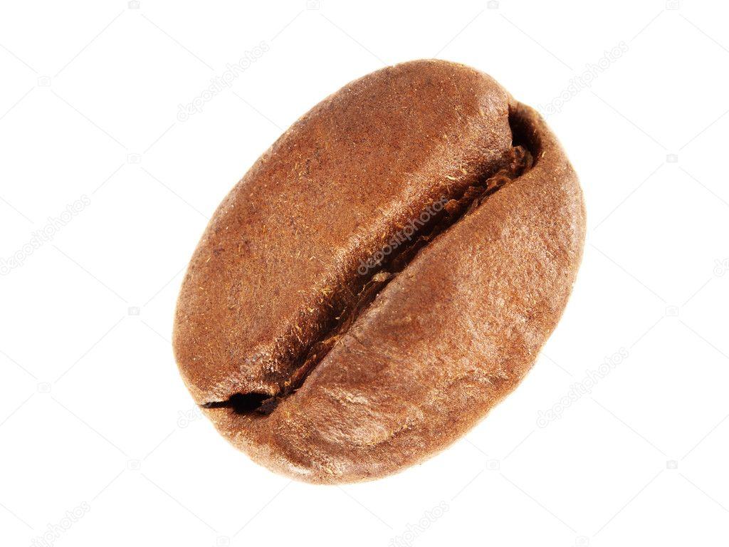 Grain De Cafe Blanc