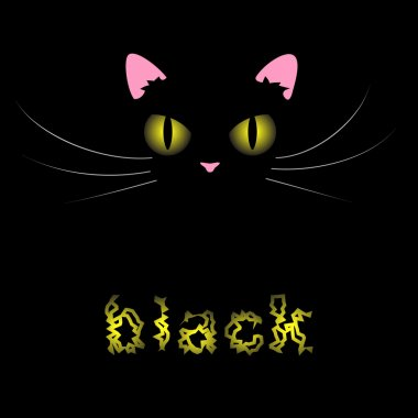 Black cat on black BG