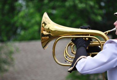 Performer Playing Mellophone in Parade