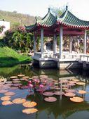 Gartenlandschaft mit Teich aus Lotusblüten