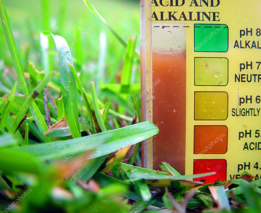 pH-Wert des Rasens messen