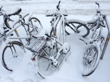 Bicycles covered by snow