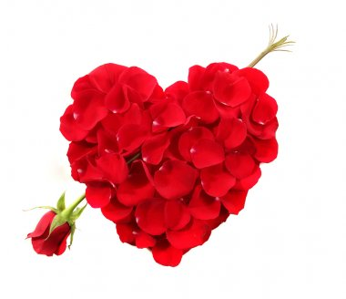 Heart Shape Made Of Rose Petals With Lon