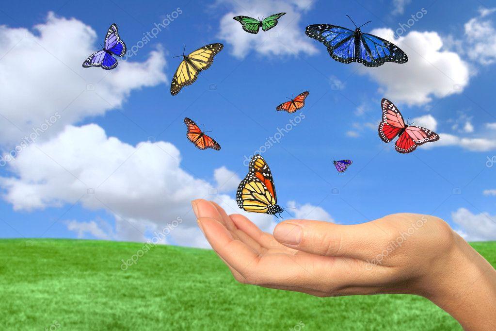 Pretty Butterflies Flying Free