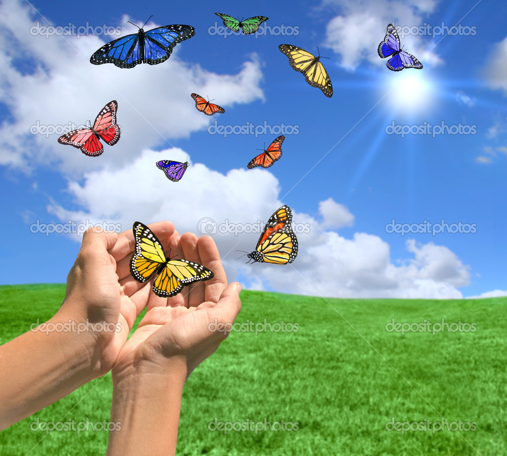 Happy Bright Landscape WIth Butterflies