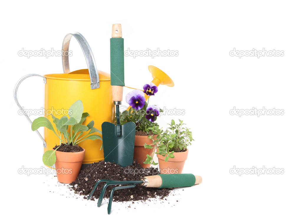 Planting New Flowers and Herbs in the Ga