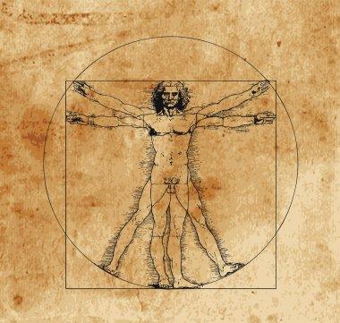 A highly stylized drawing of vitruvian man with crosshatching and sepia tones stock vector
