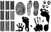 Fotografia una raccolta delle impronte digitali vettoriali