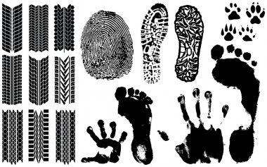 A collection of Vector Fingerprints