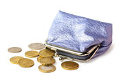 Purse with pocket money isolated