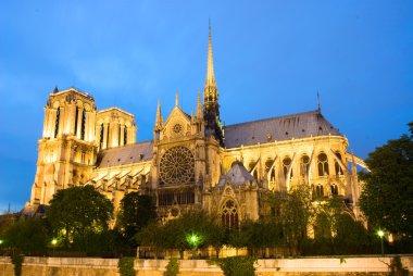 Notre Dame de Paris. Evening view.