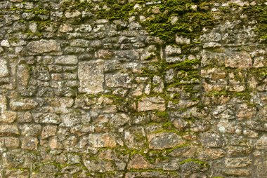 Old stone texture wall with moss