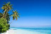 Fotografie tropischen Strand