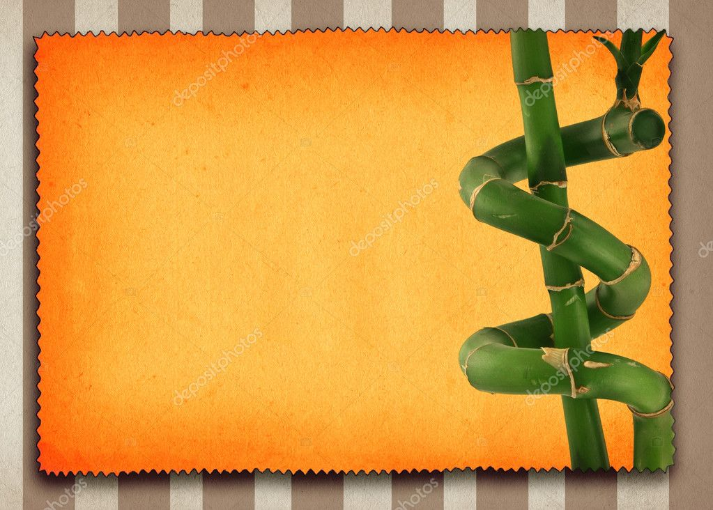 Lucky bamboo background