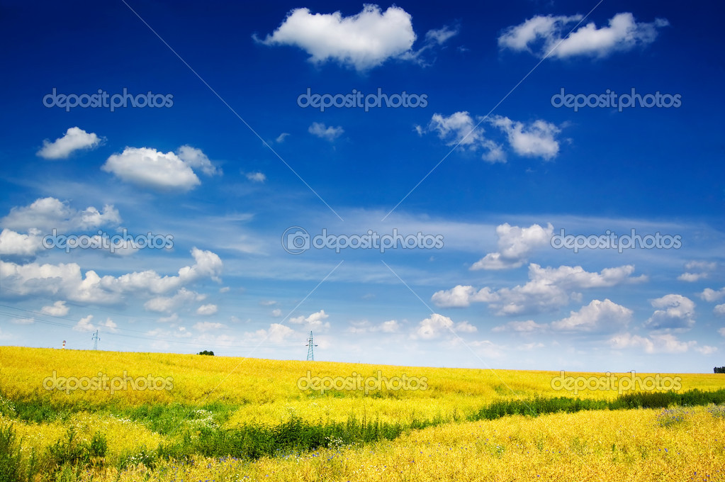 Colorful countryside landscape