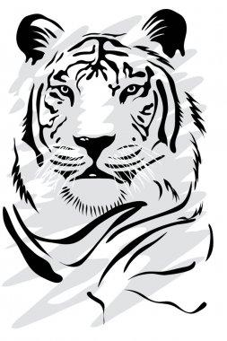 """Картина, постер, плакат, фотообои """"белый тигр """", артикул 2275069"""