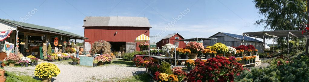 Farm Panorama with Floral Merchandise