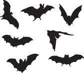 Photo Bats vector