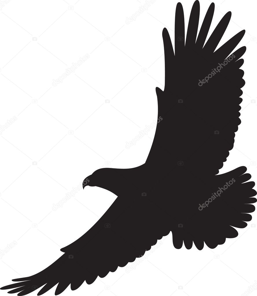 eagle vector stock vector abrakadabra 2480244 rh depositphotos com eagle vector clipart eagle vector art