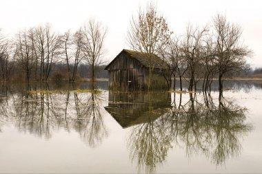 Flooded barn