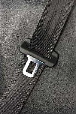 Black Seat Belt