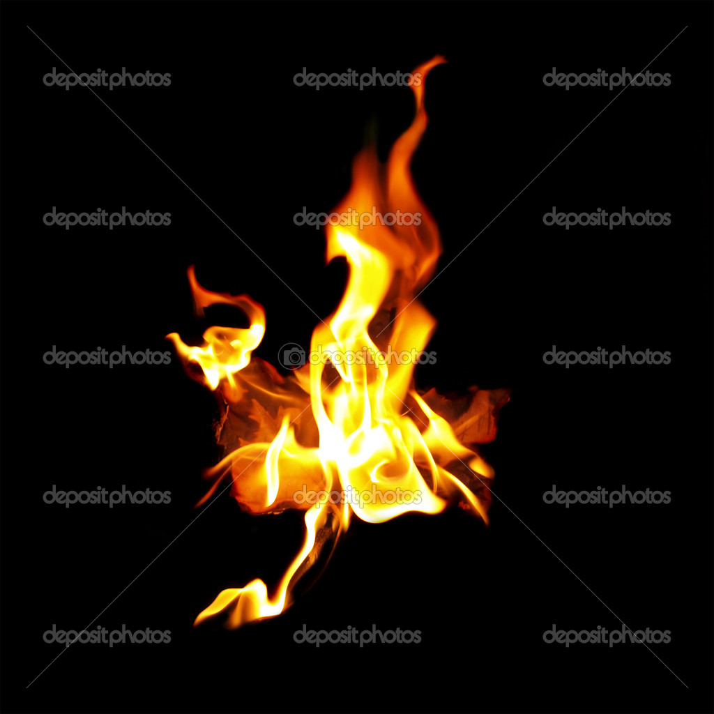 Red Maple leaf on fire — Stock Photo © borismrdja #2216515