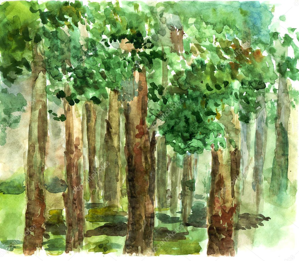 Shady grove watercolor