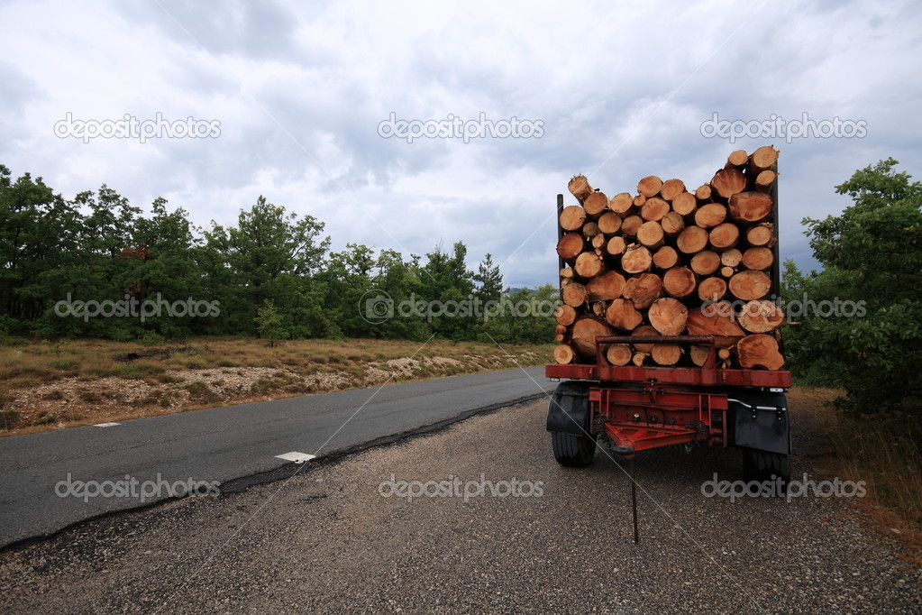 Truckload timber