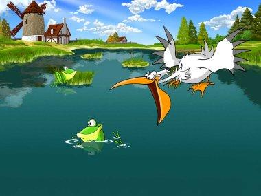 Pelican hunts for the Frog