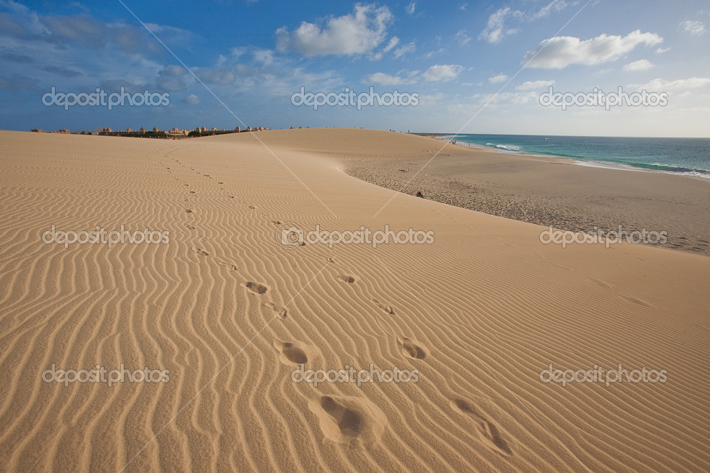 Sand dunes near the ocean