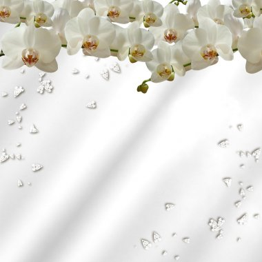 Scattered orchids