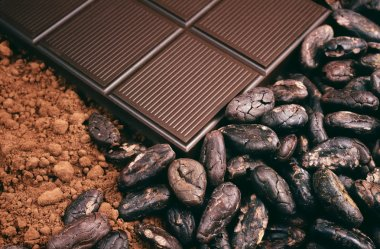 Bar of chocolate, cocoa beans, powder
