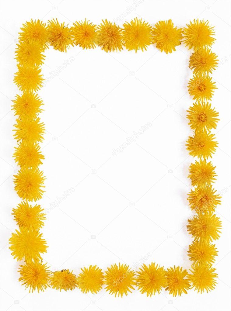 Dandelion - frame