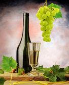 ročník Zátiší s bílým vínem