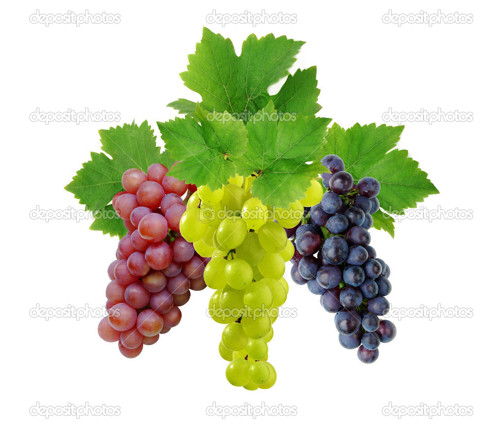 Three fresh decorative grapes
